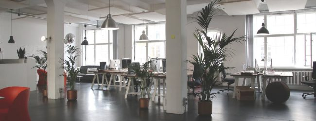 Tips for Designing a Workplace