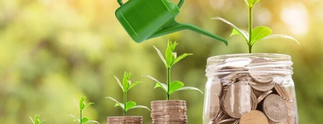 The amazing advantages of investment funds for your business